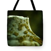 Leap Of Faith Tote Bag by Rebecca Sherman
