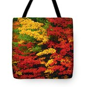 Leaves On Trees Changing Colour Tote Bag by Mike Grandmailson