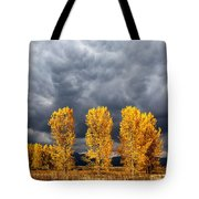 Light And Darkness Tote Bag by Evgeni Dinev