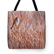 Little Sparrow Tote Bag by Sabrina L Ryan