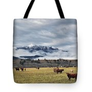 Livingstone Range And Pastureland Tote Bag by Darwin Wiggett