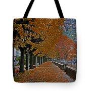 Locarno in autumn Tote Bag by Joana Kruse