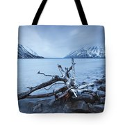 Log Along The Shores Of Kathleen Lake Tote Bag by Robert Postma