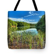 Long Branch Lake Marsh Tote Bag by Adam Jewell