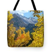 Long's Peak And The Keyboard Of The Winds Amidst Aspen Gold Tote Bag by Margaret Bobb