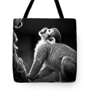 Look Up Tote Bag by Darcy Michaelchuk