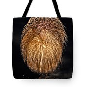 Lopez Island Fireworks 1 Tote Bag by David Salter