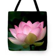 Lotus Beauty--blushing Dl003 Tote Bag by Gerry Gantt