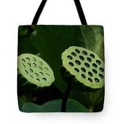Lotus Capsules-sun Worshipers Dl052 Tote Bag by Gerry Gantt
