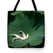 Lotus Leaf--castoff IIi Dl060 Tote Bag by Gerry Gantt