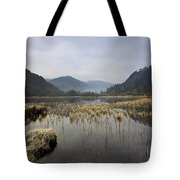 Lower Lake, Glendalough, County Tote Bag by Peter McCabe
