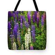 Lupins in Newfoundland meadow Tote Bag by Elena Elisseeva