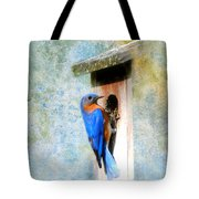 Male Eastern Bluebird At Nesting Box Tote Bag by Jai Johnson