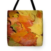 Maple Rainbow Tote Bag by Ausra Paulauskaite