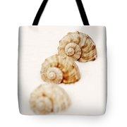Marine Snails Tote Bag by Joana Kruse