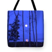 May Moon Through Birches Tote Bag by Francine Frank