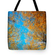 Meet In Heaven. Autumn Glory Tote Bag by Jenny Rainbow