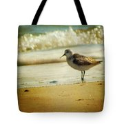 Memories of Summer Tote Bag by Amy Tyler