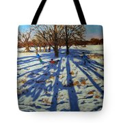 Midwinter Tote Bag by Andrew Macara