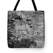 Montezuma Castle  Tote Bag by Jack Pumphrey