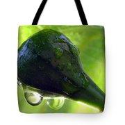 Morning Dew Figs Tote Bag by Karen Wiles