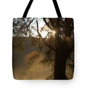 Morning Has Broken Tote Bag by Karol Livote