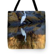 Morning Of Apricot Tote Bag by Karen Wiles
