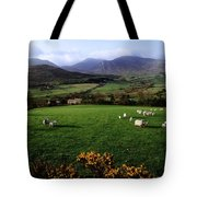 Mourne Mountains From Trassey Road, Co Tote Bag by The Irish Image Collection