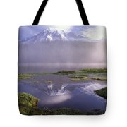 Mt Rainier An Active Volcano Encased Tote Bag by Tim Fitzharris