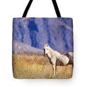 Mustang Tote Bag by Mark Newman and Photo Researchers