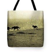 Mustangs Tote Bag by Betsy Knapp