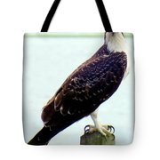 My Feathered Friend Tote Bag by Karen Wiles