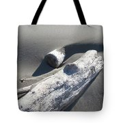 Nature Coastal Art Prints Driftwood Sand Dunes Tote Bag by Baslee Troutman