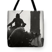 Neptune Fountain and Rotes Rathaus tower Tote Bag by RicardMN Photography