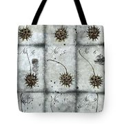 Nine Seed Pods Tote Bag by Carol Leigh