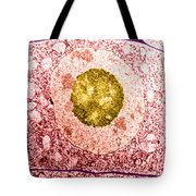 Normal Cell Tote Bag by Science Source