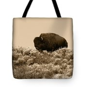 Old Timer Tote Bag by Shane Bechler