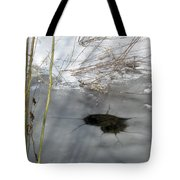 On The River. Heart In Ice 02 Tote Bag by Ausra Paulauskaite