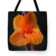 Orange Canna Lily Tote Bag by Melanie Moraga