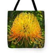Orange Protea Flower Art Tote Bag by Rebecca Margraf