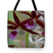 Orchid Sonata Tote Bag by Suzanne Gaff