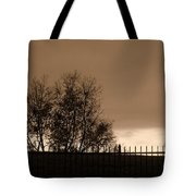 Out Of Reach Tote Bag by Ed Smith