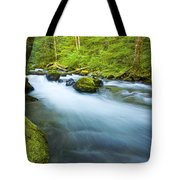 Out Of The Rainforest Tote Bag by Mike  Dawson
