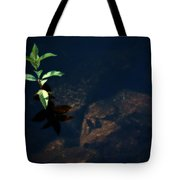 Out Of The Water Comes Shadows Tote Bag by Karol  Livote