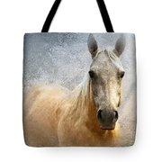 Palomino Tote Bag by Betty LaRue