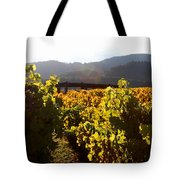 Passage Through The Old Vineyard Tote Bag by Wingsdomain Art and Photography