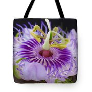 Passion Flora Tote Bag by Juergen Roth