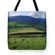 Pastoral Scene Near Anascual, Dingle Tote Bag by The Irish Image Collection