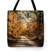 Path To Nowhere Tote Bag by Jai Johnson