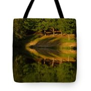 Patterns Of Nature Tote Bag by Karol  Livote